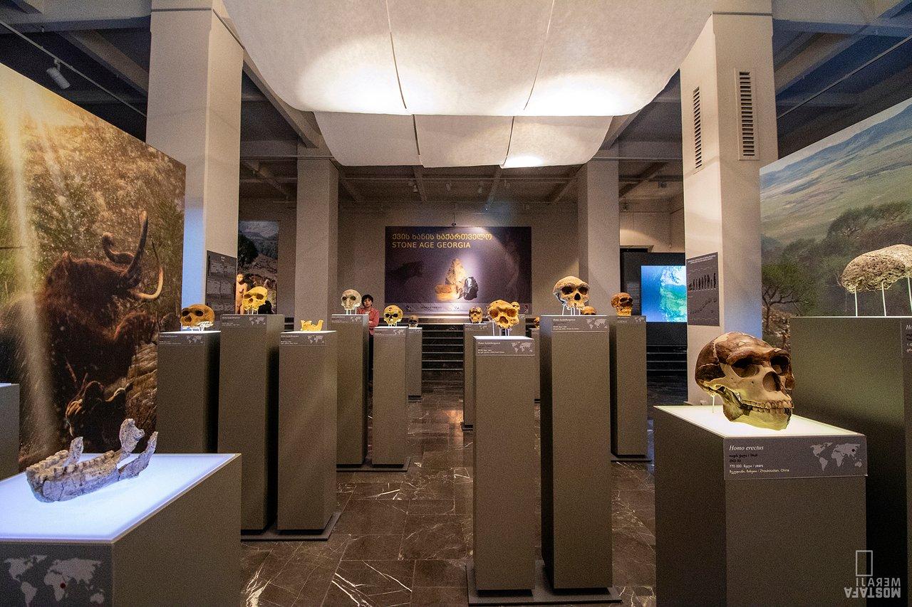 georgian national museum tbilisi